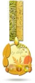 Médaille_défi_novembre_2015